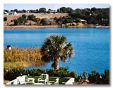 Lake Nettie Eustis Florida